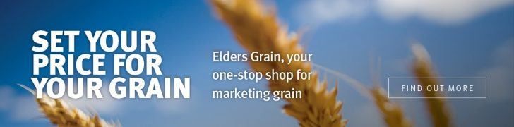 Set your price for grain