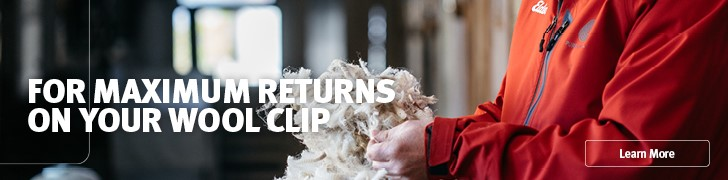 maximise-your-wool-clip-with-elders